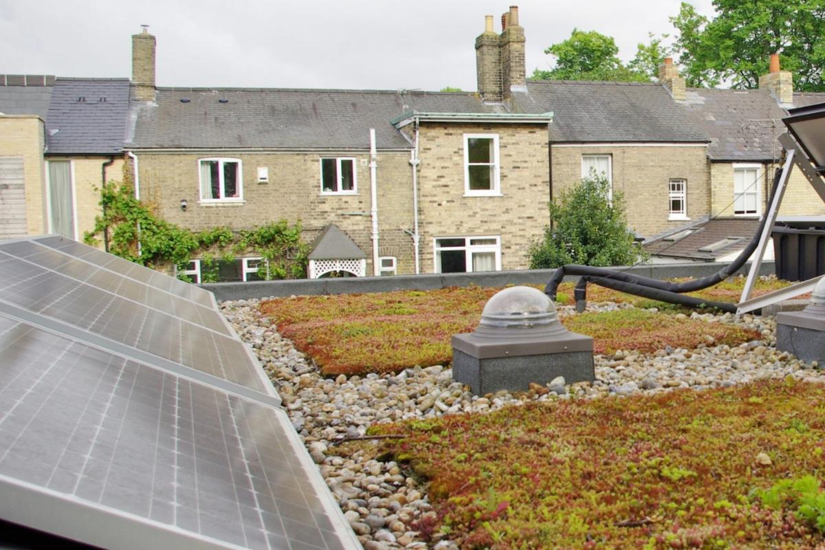 Earth Optimism: Shrink your Carbon Footprint